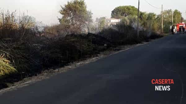 Incendio canneto Pescopagano 2
