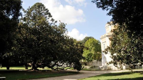 La giornata nazionale degli alberi alla Reggia di Caserta