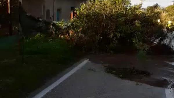 Allagamenti e frane, donna con l'auto in una voragine I VIDEO