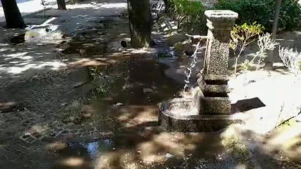Vandalizzata la fontana in piazza Vanvitelli I FOTO