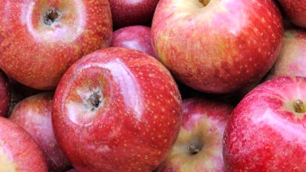 Festa della mela: al via la 27^ edizione