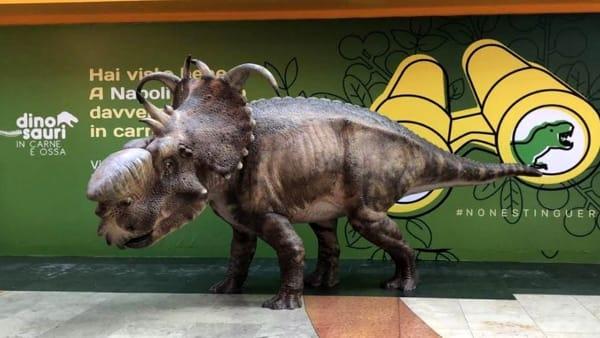Un dinosauro nel centro commerciale
