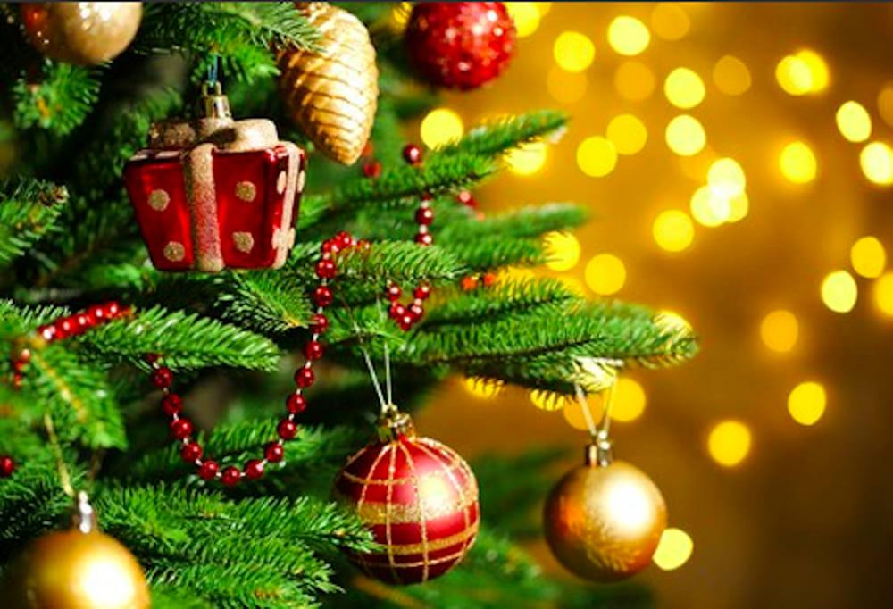 Addobbi Natalizi Happycasa.Come Scegliere L Albero Di Natale Giusto
