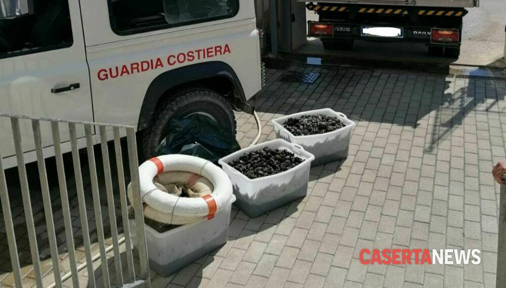 Sequestrati 400 chili di cozze a pescatore 'sportivo'