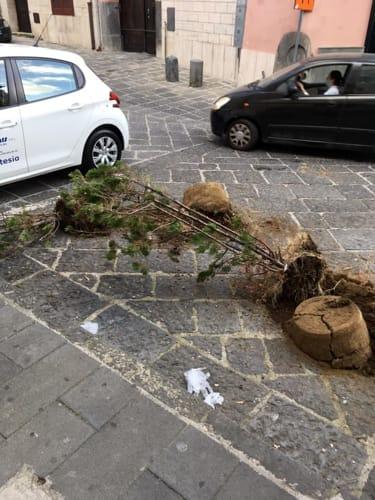 furto vasi piante chiesa aversa-2